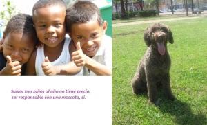 la vida de tres niños no tiene precio. Ser responsable con una mascota, sí, 1500 euros